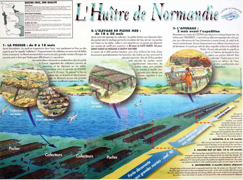 huitre normandie